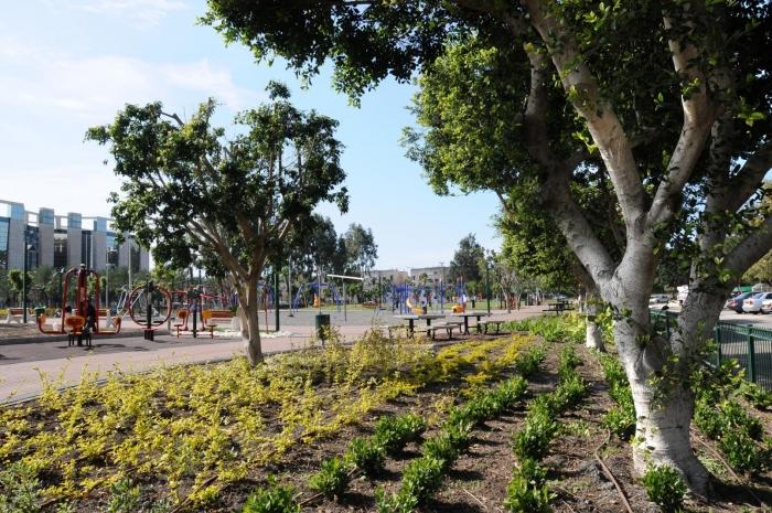 פארק אסתר